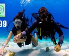 scuba_diving_deals_in_dubal